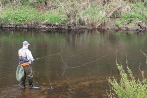 fishing-lower-dale