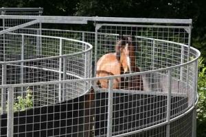 horse-walker